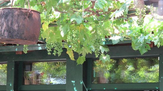 Konoba Duga: Im Gastgarten