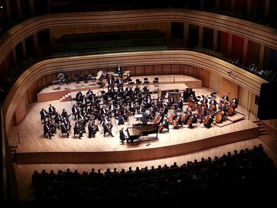 Palacio de las Artes (Muveszetek Palotaja): The orchestra as seen from the upper balcony