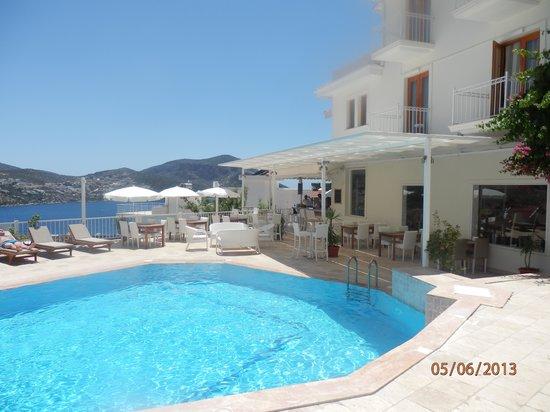 Rhapsody Hotel: Great pool and fab location