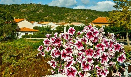 Maison L'Orchidee: Saint Hiliare Laguedoc France