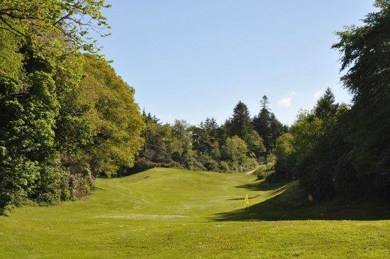 Parknasilla Resort & Spa : golf
