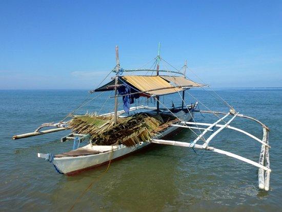 Artistic Diving Resort : Local Boat