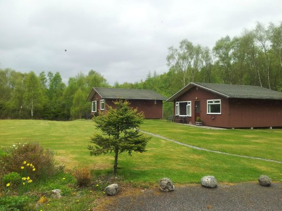 Torcroft Lodges: View of the site - very well maintained