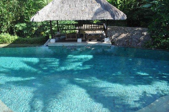 Plataran Canggu Resort & Spa: Pool View