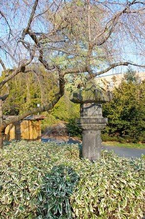 Brooklyn botanic garden 2018 ce qu 39 il faut savoir pour votre visite tripadvisor for Hotels near brooklyn botanical garden