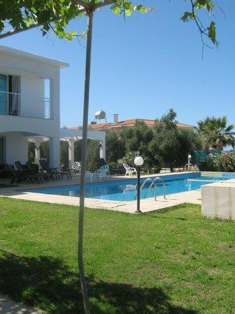 Amalthia Villas: Villa and pool