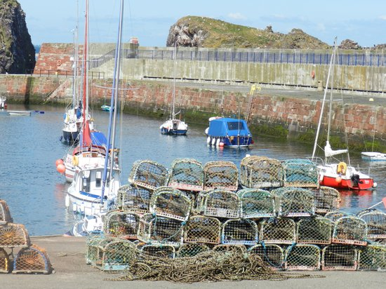 Royal Mackintosh Hotel: Dunbar Harbour
