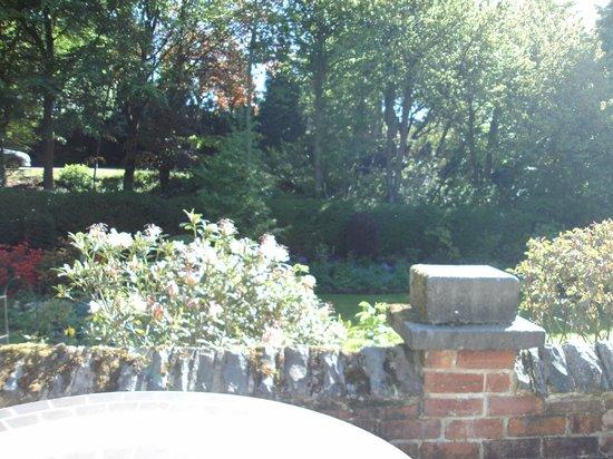 Woodlands Guest House: The back garden Woodlands Guest House