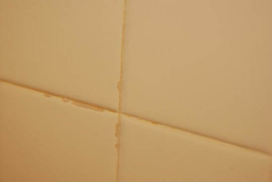 Indio Travelodge: Mold on almost all grout