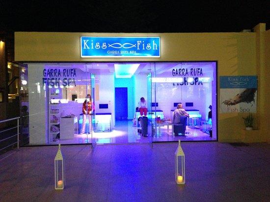 Kiss Fish Spa: getlstd_property_photo