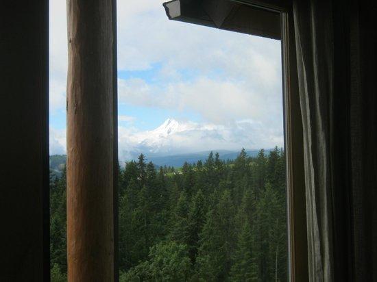 Sakura Ridge - The Farm and Lodge: The view of Mount Hood