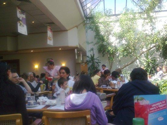 Pajarera en sanborns divisi n del norte mexico df for Sanborns restaurant mexico