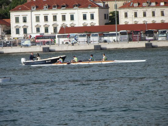 Hotel Kazbek: Watching scullers on the harbour