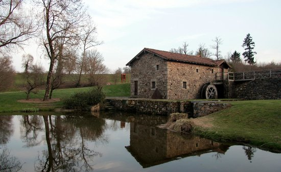 Domaine des Etangs : One of the cottages to rent in the grounds