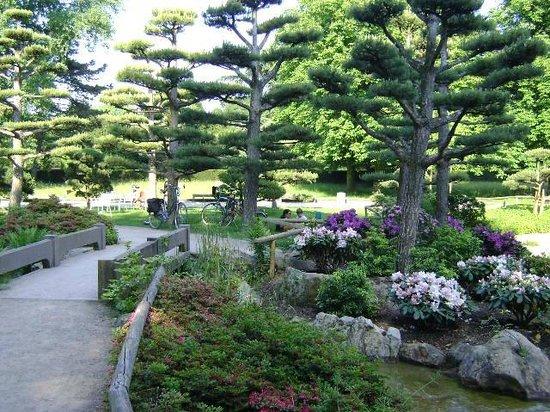 Japanischer Garten: Japanese Garden, Düsseldorf, Alemania.