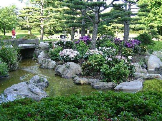 Japanese Garden Düsseldorf Alemania Bild Von Japanischer Garten