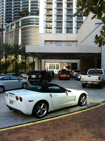 Hyatt Regency Miami: Parkplätze vor dem Hotel