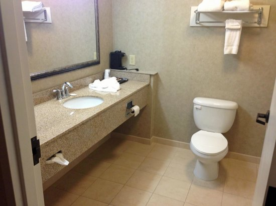 Comfort Inn Warner Robins: bathroom