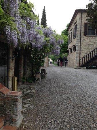 Tenuta di Ricavo: Add a caption