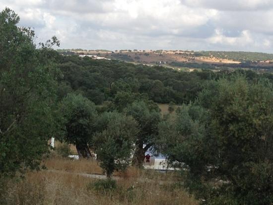Villa Extramuros: lugar esplendido,calmo e limpo.