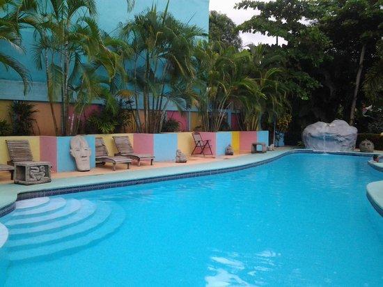 Hotel La Palmera: piscina