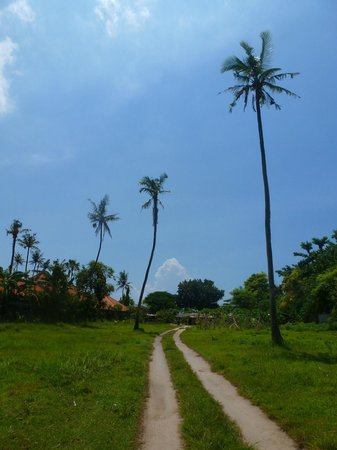 Enny's Homestay: Another path to the beach