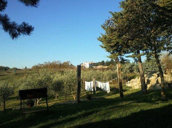 San Martino Casa Landi: STRADINA VERSO CASTELLINA