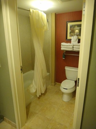 Homewood Suites by Hilton Jacksonville Downtown/Southbank : Bathroom