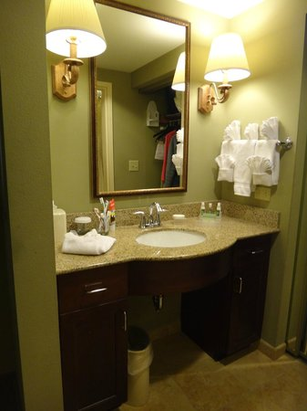 Homewood Suites by Hilton Jacksonville Downtown/Southbank : Vanity Area