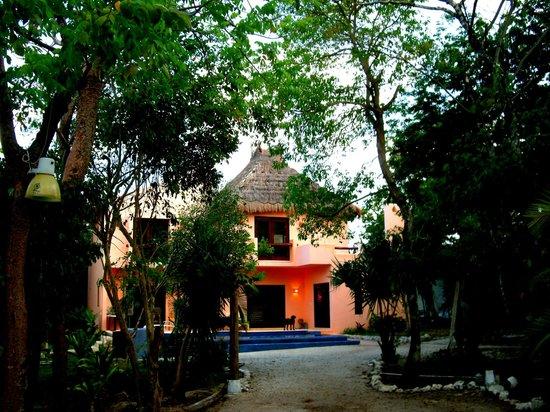 Villas El Encanto: vue depuis une des entrées de l'hôtel, proche des appartements