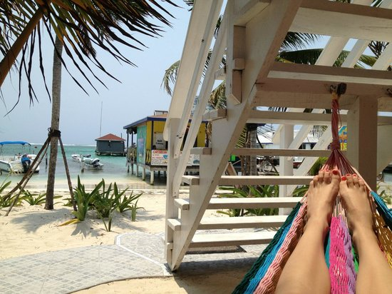 Conch Shell Inn: Great hammocks