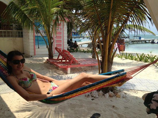Conch Shell Inn: Hammocks everywhere!