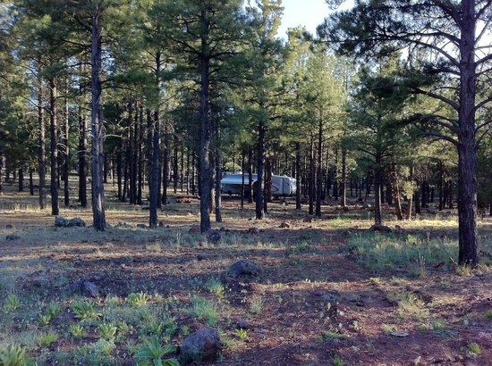Kaibab Lake Campground: Campsite at a distance