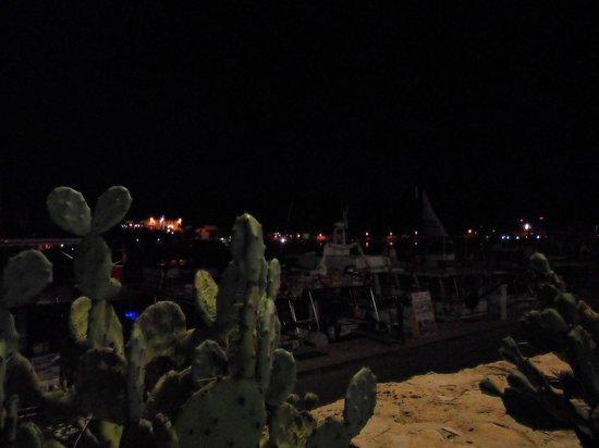 L'Angolo del Mare: vista sul porto