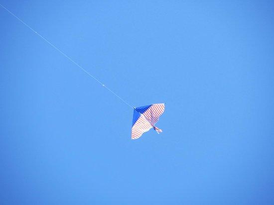 Castle Island: Kite flying