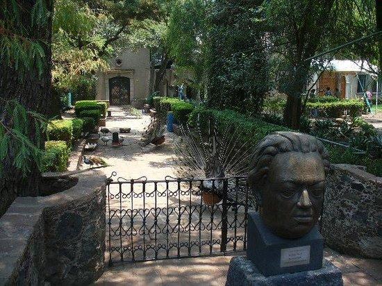 Un busto de diego rivera en el jard n picture of museo for Jardines olmedo