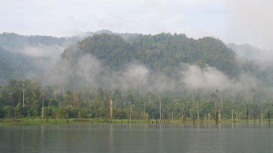 Ton Tuey Floating Raft Houses: Morning mist