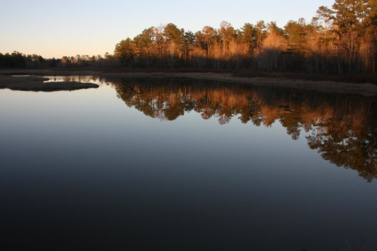 Magnolia Springs Park: Magnolia Springs State Park
