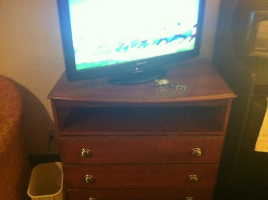 Quality Inn & Suites Airport / Cruise Port South: Dresser and tv