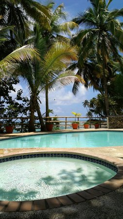 Caribe Playa Beach Hotel : pool