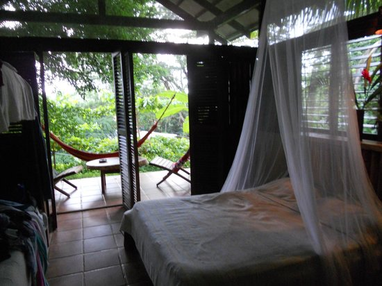 Funky Monkey Lodge : view of the room from inside, looking out across the backporch, great for monkey watching