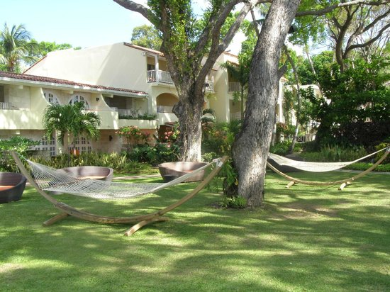 Tamarind by Elegant Hotels: Relax under the Palm trees