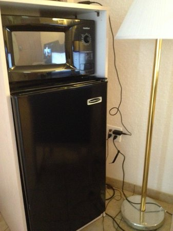 Quality Inn Sarasota/Siesta Key: Microwave and fridge