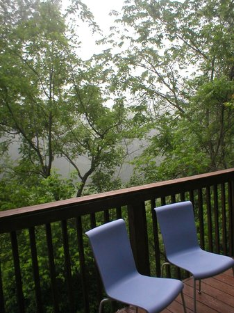 Little Orleans Lodge: Over the backyard high up, neat!