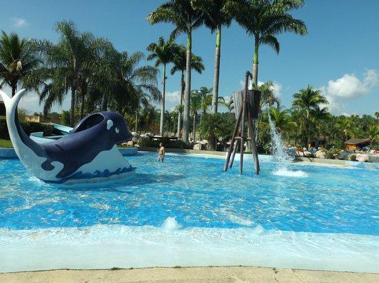 Aldeia das Aguas Park Resort: Parque das águas
