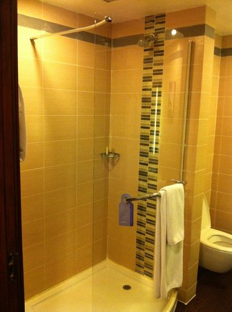 Hilton Garden Inn New Delhi / Saket: Shower