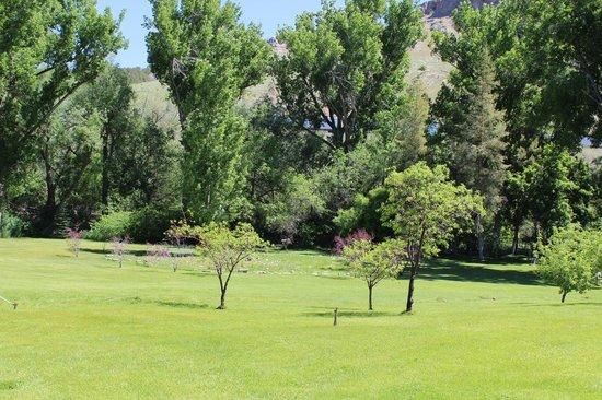 أورا سوما لافا: Grassy area next to the hot springs pool.
