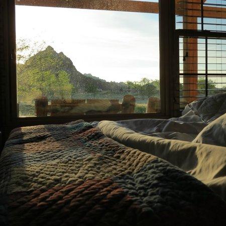 Cedar Pass Lodge : Picture Window in Cabin