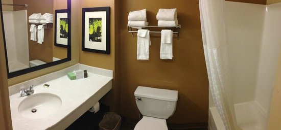 Extended Stay America - Annapolis - Womack Drive: Bathroom