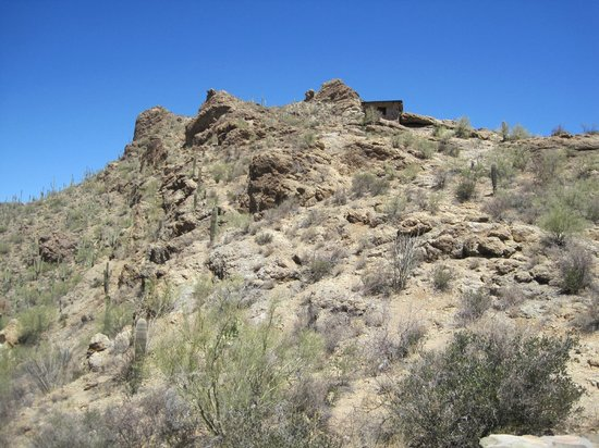 Tucson Mountain Park: Saguaro Cactus, Desert Plants, Great Views & Trails
